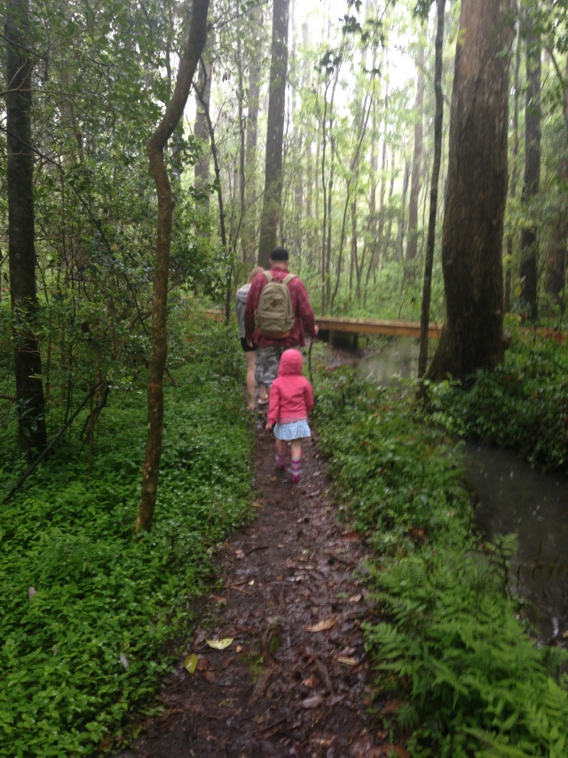Fun ways to explore nature in an urban environment with your kids