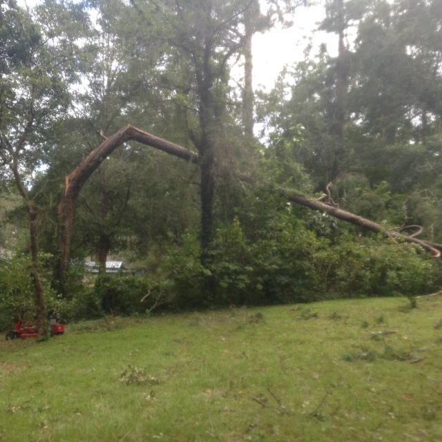 Hurricane Hermine: Campstoves, Coffee, & Community Spirit